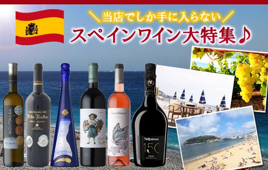 スペインワイン大特集♪