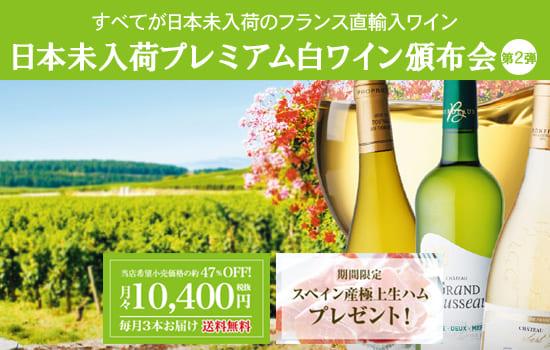 日本未入荷プレミアム白ワイン頒布会【第2弾】