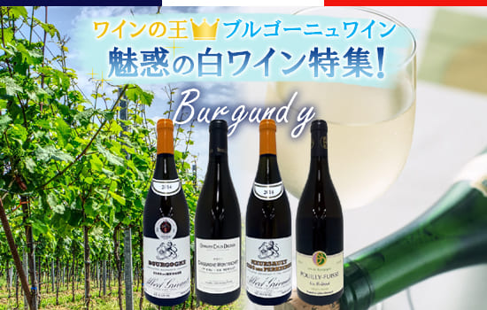 魅惑の白ワイン特集!