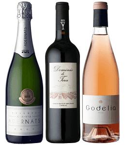 秋のスペインワインセット
