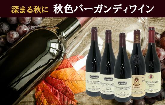 秋色バーガンディワイン