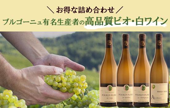 高品質ビオ・白ワイン詰め合わせセット