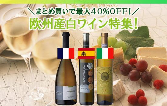 欧州産白ワイン特集!