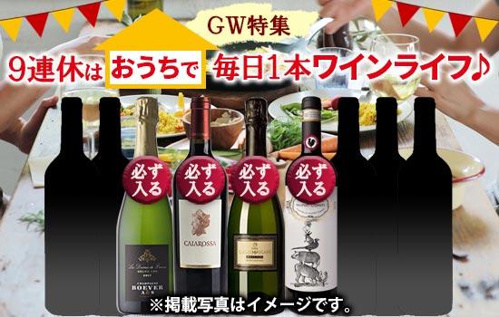 GWは毎日ワインライフ♪ワイン9本セット