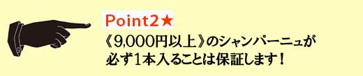 Point2★《9,000円以上》のシャンパーニュが必ず1本入ることは保証します!