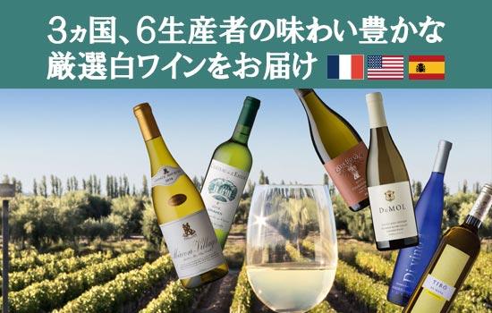 白ワイン堪能3か月コース