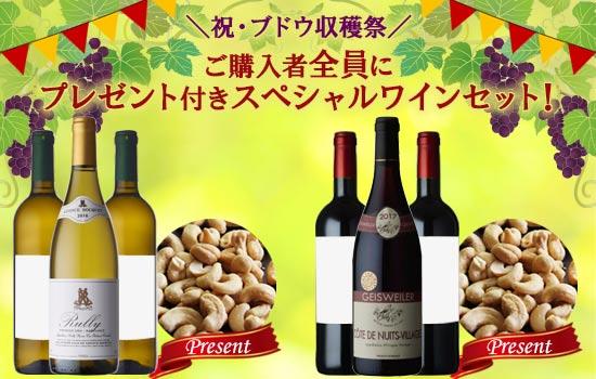 プレゼント付きスペシャルワインセット!
