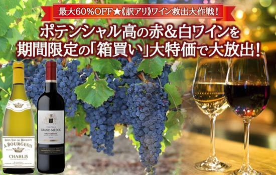 ポテンシャル高の赤&白ワイン