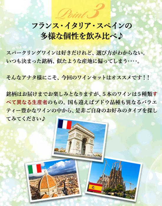【Point3】フランス・イタリア・スペインの多様な個性を飲み比べ♪