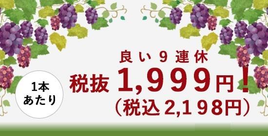 税込2,199円